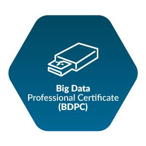Big Data Professional Certificate (BDPC)
